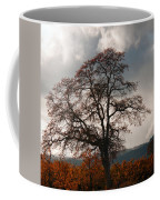 Touch The Sky Coffee Mug