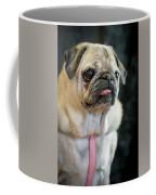 Toutou 13 Coffee Mug