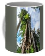 Towering Trees Coffee Mug