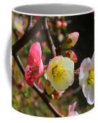 Toyo-nishiki Coffee Mug