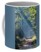 Trail In Morning Light Coffee Mug