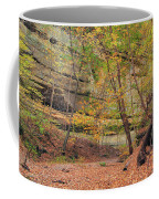Trail In Tonty Canyon Coffee Mug