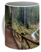 Trail Over Sol Duc Falls Bridge In Olympic National Park Coffee Mug