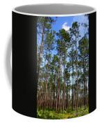 Trail Through The Pine Forest Coffee Mug