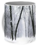 Trail Through The Winter Forest Coffee Mug