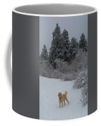 Traildog Loving The Winter Scene In The Flatirons Coffee Mug