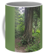Trails Coffee Mug