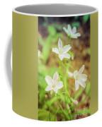 Tranquil Carolina Spring Beauty Coffee Mug