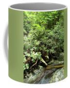 Tranquil Mountain Laurel Stream In The Great Smoky Mountains National Park Coffee Mug