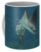 Tranquil Sea Creatures Coffee Mug