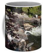 Tranquil Spot Coffee Mug