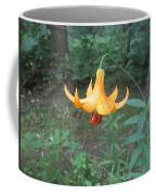Tranquil Woods Coffee Mug