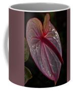 Translucent Beauty Coffee Mug