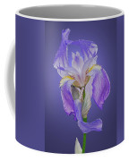 Translucent Iris Coffee Mug