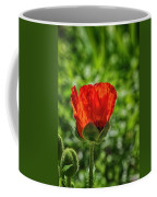 Translucent Poppy Coffee Mug