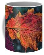 Translucent Red Oak Leaf Study Coffee Mug