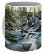 Trap Falls In Spring 4 Coffee Mug