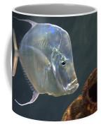 Treasure Guard Coffee Mug