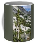 Treasure Lake Pine Coffee Mug