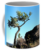 Tree And Rock Coffee Mug
