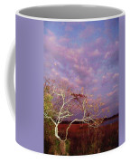 Tree And Sky At Cape May Point State Park  Nj Coffee Mug