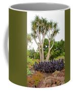Tree And Succulents In Huntington Desert Gardens In San Marino-california Coffee Mug