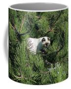 Tree Bandit Coffee Mug