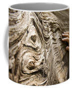 Tree Bark And Hand Coffee Mug