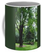 Tree Bench Coffee Mug