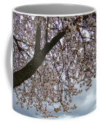 Tree Blossoms Landscape 11 Spring Blossoms Art Prints Giclee Sky Storm Clouds Coffee Mug