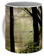 Tree Bowing To Swimming Beaver  Coffee Mug