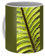 Tree Fern Frond Coffee Mug