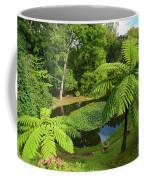 Tree Ferns Coffee Mug by Gaspar Avila