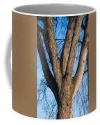 Tree Fork Coffee Mug