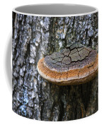 Tree Fungus 4 Coffee Mug