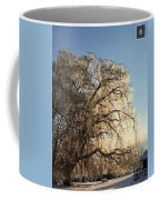 Tree In Ice Coffee Mug
