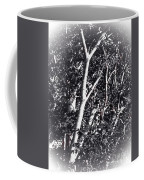 Tree In Summer In Black And White Coffee Mug