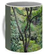 Tree Japanese Garden Coffee Mug