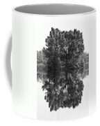 Tree Reflection In Black And White Coffee Mug