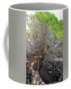 Tree Rock And Life Coffee Mug