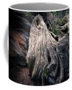 Tree Stump Coffee Mug