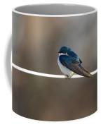 Tree Swallow  3708 Coffee Mug