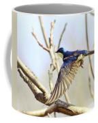 Tree Swallow In Flight Coffee Mug