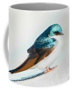 Tree Swallow Coffee Mug