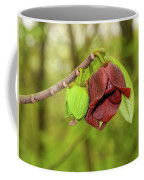 Tree Waking Up From Winter Coffee Mug
