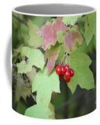 Tree With Red Berry Coffee Mug