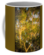 Tree With V Shaped Branches Coffee Mug