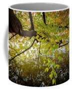 Trees 9684 Coffee Mug