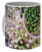 Trees And Path From Above Drone Photography Coffee Mug