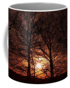Trees At Sunset Coffee Mug